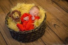 Newborn Antonio 6 dias-15